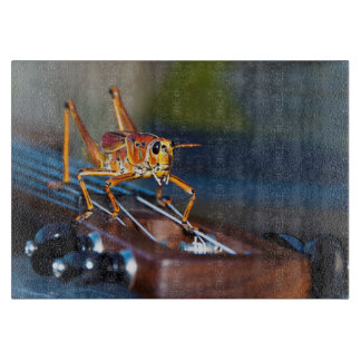 Hopper on a Headstock Glass Cutting Board