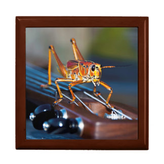 Hopper on a Headstock Large Tile Gift Box