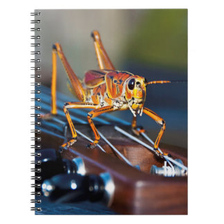 Hopper on a Headstock Notebook