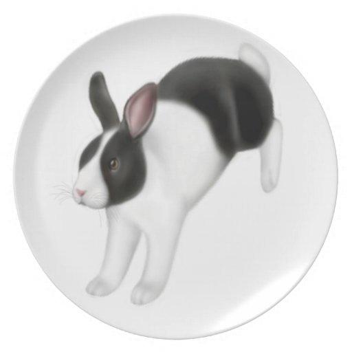 Hopping Bunny Rabbit Plate