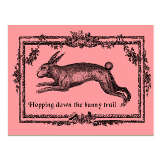 Hopping Down the Bunny Trail Easter Cards Post Card