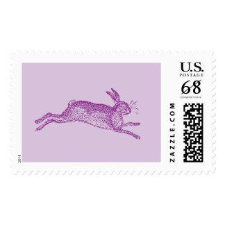 Hopping Rabbit Postage