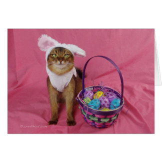 Hoppy Easter Somali Cat Card