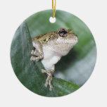 'Hoppy' Holidays! Ornament