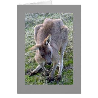 Hoppy The Kangaroo Card