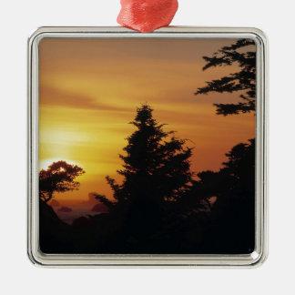 Hora de acostarse de la puesta del sol de los árbo ornato