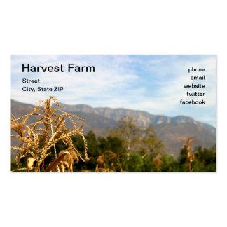 Hora de cosechar plantillas de tarjetas de visita
