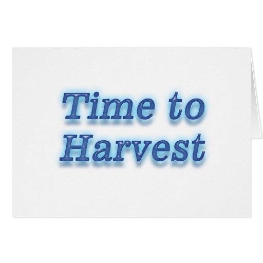 Hora de cosechar V2 Tarjetas