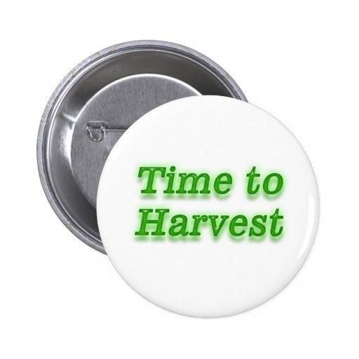 Hora de cosechar V3 Pin Redondo 5 Cm