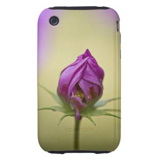 Hora de florecer iPhone 3 tough coberturas