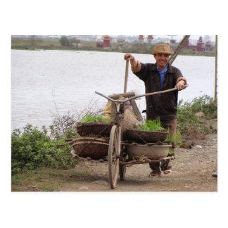 Hora de mover el arroz postales