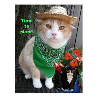 ¡Hora de plantar! Postales