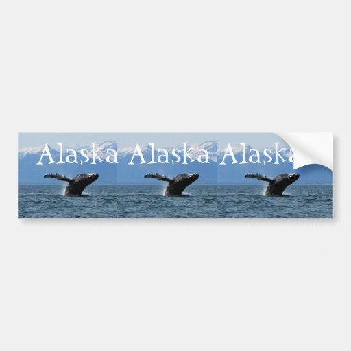 Hora del recreo de la ballena; Alaska Pegatina De Parachoque