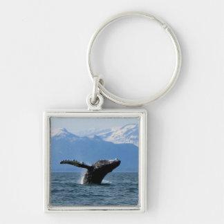 Hora del recreo de la ballena; Ningún texto Llavero Cuadrado Plateado