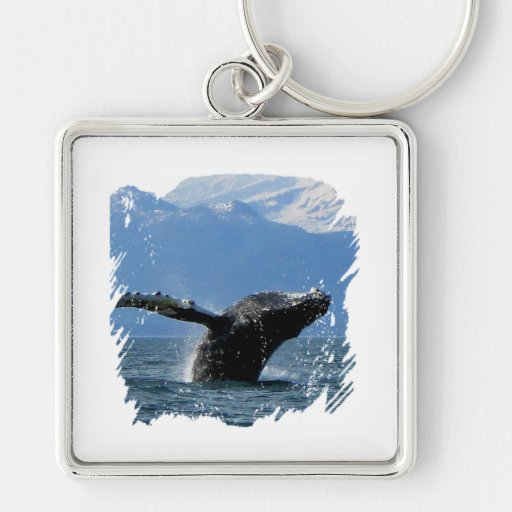 Hora del recreo de la ballena; Ningún texto Llaveros