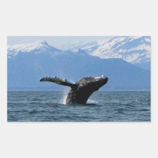 Hora del recreo de la ballena; Ningún texto Rectangular Pegatina