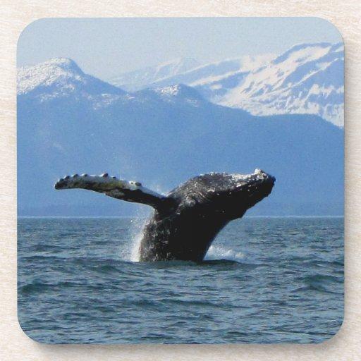 Hora del recreo de la ballena; Ningún texto Posavaso