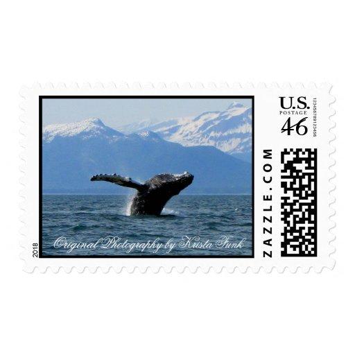 Hora del recreo de la ballena; Ningún texto Sello