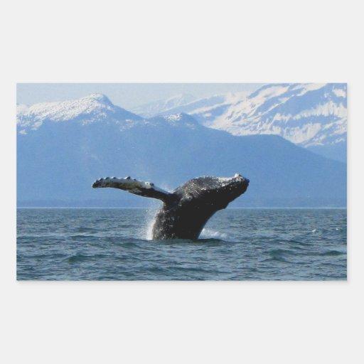 Hora del recreo de la ballena rectangular pegatinas