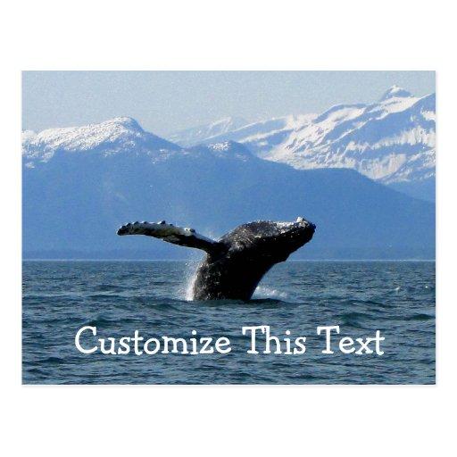 Hora del recreo de la ballena; Personalizable Tarjetas Postales