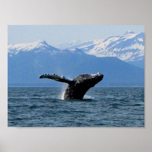 Hora del recreo de la ballena póster