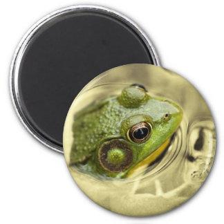 hora para la rana imán redondo 5 cm