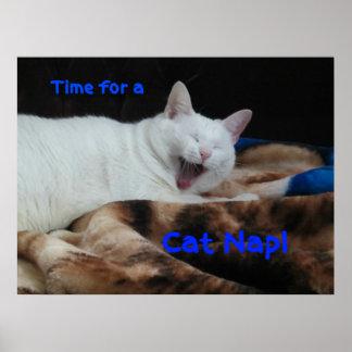 ¡Hora para una siesta del gato! Póster