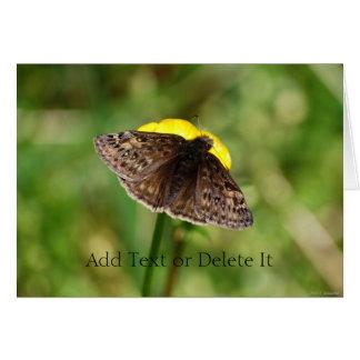 Horace's Duskywing Butterfly card