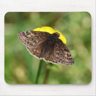 Horace's Duskywing Butterfly mousepad