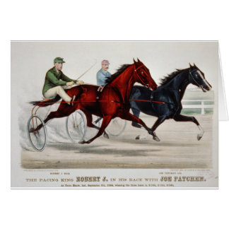 horce racing chariout greeting card