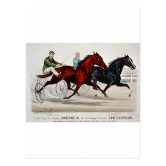 horce racing chariout postcard