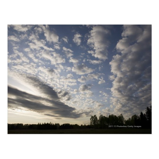 Horizon Sky View with Clouds Postcard