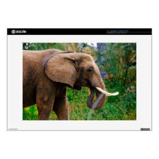 Horizontal Elephant Portrait Photograph Laptop Decal