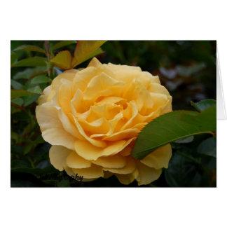 Horizontal Greeting Card:  Yellow Camellia Card