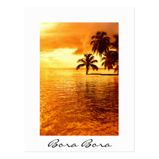 Horizontal palm tree sunset white text postcard