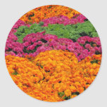 Horizontal template classic round sticker