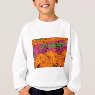 Horizontal template sweatshirt