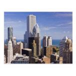 Horizonte de Chicago que mira hacia el lago Tarjetas Postales