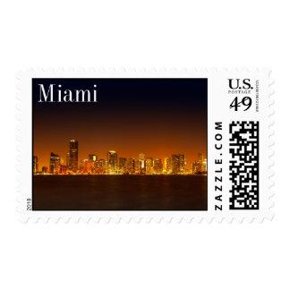 Horizonte de Miami en el panorama de la noche - Envio