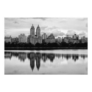Horizonte de New York City del Central Park Cojinete