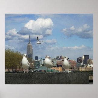 Horizonte de Nueva York con las gaviotas Póster