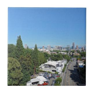 Horizonte de Portland Azulejo Cuadrado Pequeño