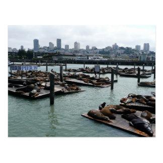 Horizonte de San Francisco y de la ciudad de los Postales