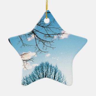 Horizonte del árbol de la caída adorno navideño de cerámica en forma de estrella