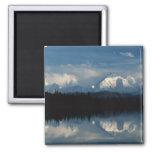 Horizonte del lago mirror con el bosque y las mont iman