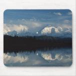 Horizonte del lago mirror con el bosque y las mont tapetes de raton