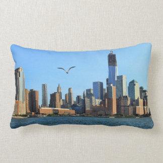 Horizonte del Lower Manhattan: WTC, Woolworth Cojines