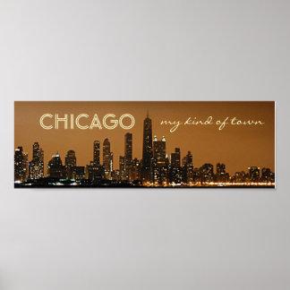 Horizonte panorámico de la noche de Chicago Póster