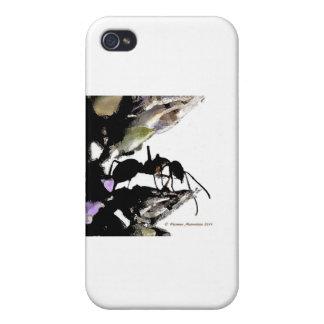hormiga   a iPhone 4 fundas