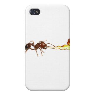 Hormiga de fuego iPhone 4/4S fundas